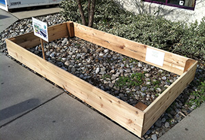 Display bed at Whole Earth