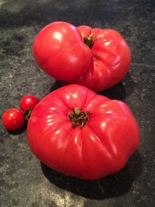 Duo duet tomatoes